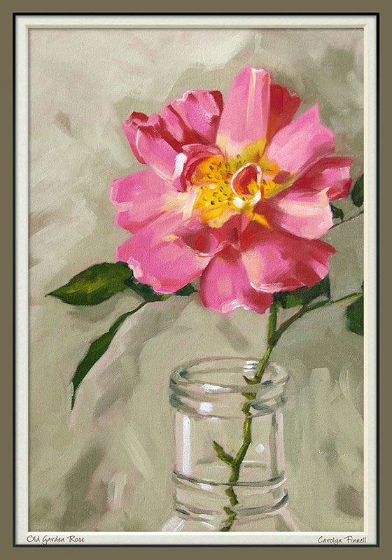 "Rose print, limited edition giclee print in 11x14 mat, from an original painting, ""Old Garden Rose"""